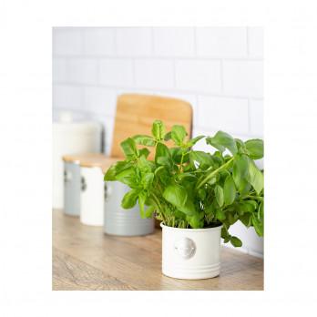 Кашпо для растений Living, 700 мл, кремовое